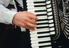 accordion.PNG