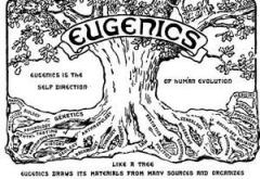 Daily July 22 Eugenics