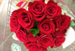 Dozen_Red_Roses.jpeg