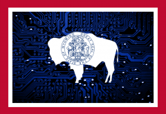 Wyoming Crypto.png