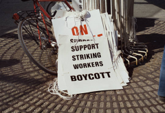 boycott.PNG