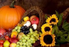 Thanksgiving Is a Celebration of Free Enterprise