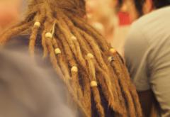 dreadlocks-844859.jpg