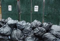 garbage_bags_near_No_Dumping_sign.jpg