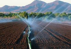 irrigation_sprinkler_Arizona.jpg