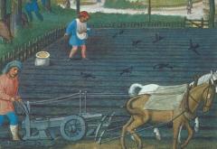 medieval.PNG
