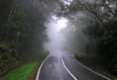 mist_road.jpg