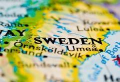How Sweden Succeeds in Spite of Itself