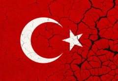 turkey1.PNG