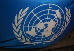 un-flag-2961283232068FGF2.jpg