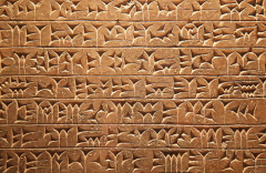 neiform.PNG