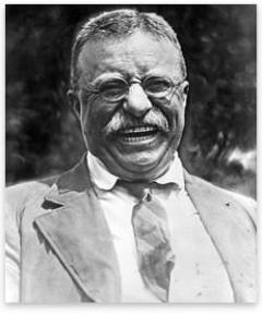 teddy roosevelt contributions