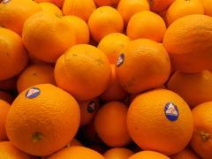 Australian_Oranges.JPG