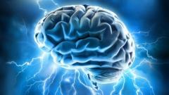 Brain_power.jpg