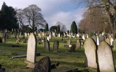 Cemetery_1.jpg