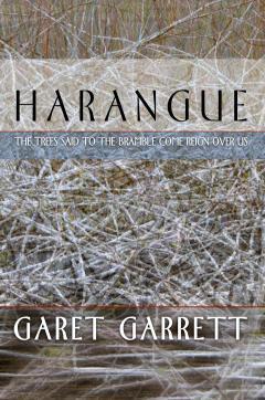 Harangue by Garet Garrett