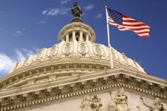 United_States_Capitol_Dome_and_Flag.jpg