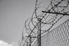 barbed-wire-1463941943o2K.jpg