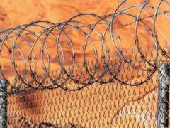 Mises Daily July 31 2015