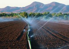 irrigation_sprinkler_Arizona.jpg