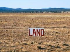 """The Fallacy of """"Buy Land — They're Not Making Any More"""""""