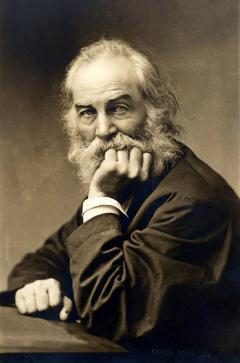 Walt Whitman photo #1380, Walt Whitman image