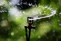 water_Sprinkler_Irrigation.JPG