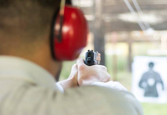 Decentralize the Gun Laws